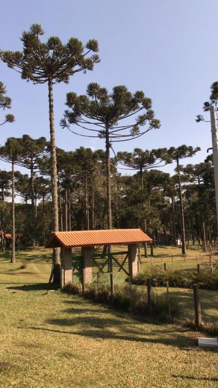 Chácara em Campo Alegre