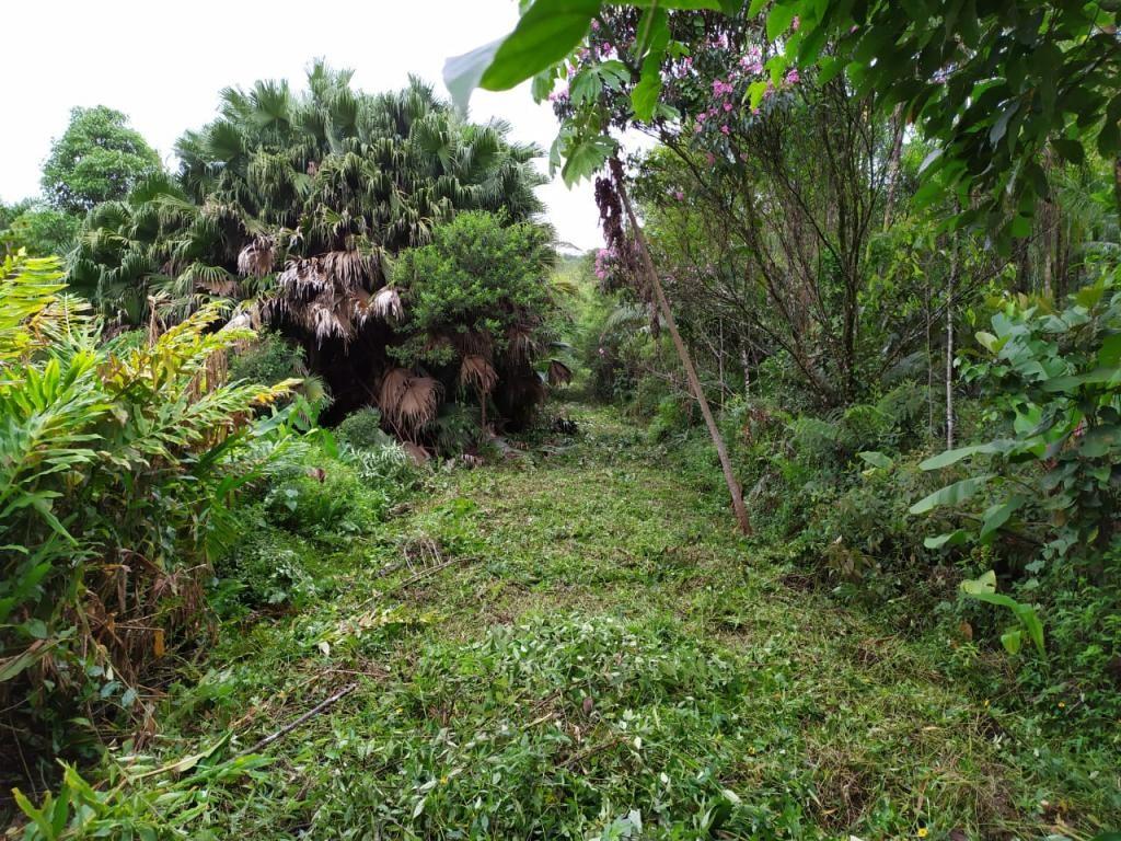 Terreno à venda,  Tres Barras,  Garuva