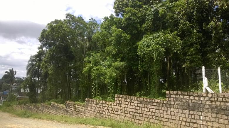 Terreno à venda,  Santa Catarina,  Joinville