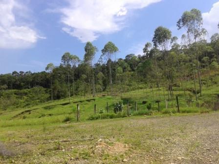 Terreno em Garuva
