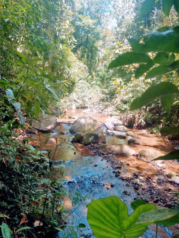 Terreno à venda,  Vila Nova - Zona Rural,  Joinville