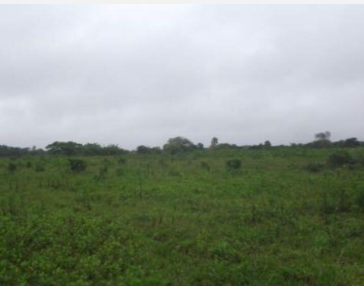 Terreno à venda,  Volta Redonda,  Araquari