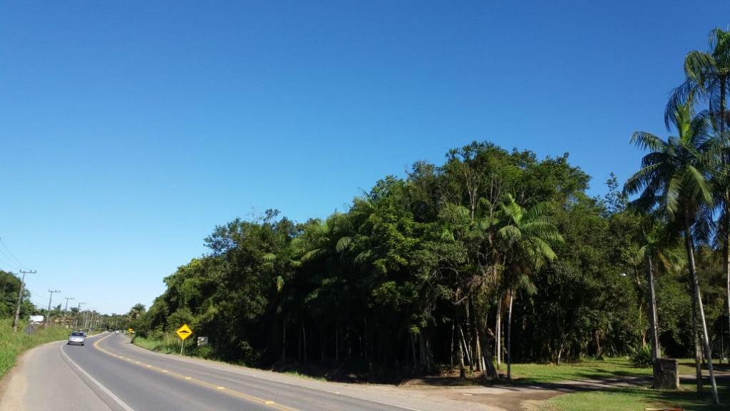 Terreno à venda,  Vila Nova,  Joinville